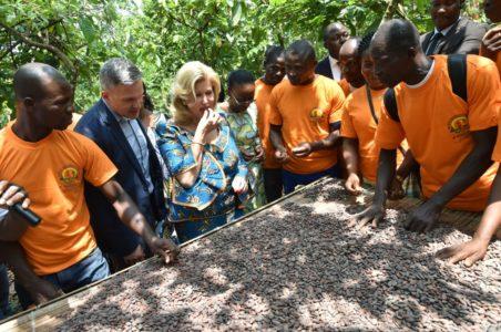 dominique-ouattara-clccg-cns-visite-plantation-adzope-cacaoculture-4.jpg